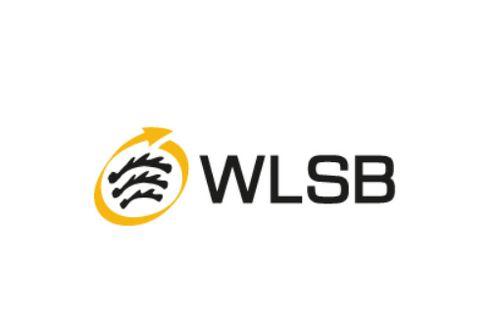 Digitale Kurzschulung des WLSB: Sportvereine in der Corona-Pandemie