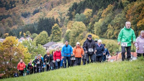 Nordic Walking im Fokus