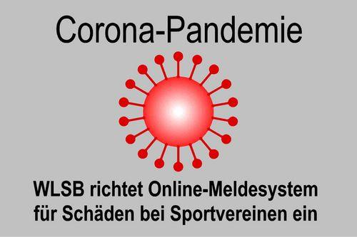 Corona-Pandemie: WLSB richtet Online-Meldesystem für Schäden bei Sportvereinen ein