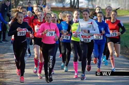 Baden-Württ. Waldlaufmeisterschaften am 17.11.2018 in Neuhengstett